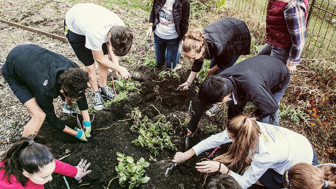 farm-ecosystems